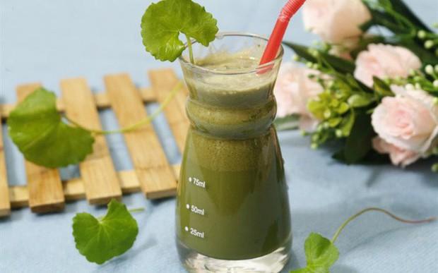 """Uống nước ép từ loại rau này vừa thanh nhiệt, làm đẹp da và lại có những bài thuốc chữa bệnh rất """"thần sầu""""! - Ảnh 1."""