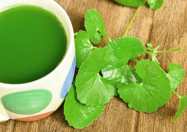 """Uống nước ép từ loại rau này vừa thanh nhiệt, làm đẹp da và lại có những bài thuốc chữa bệnh rất """"thần sầu""""! - Ảnh 2."""