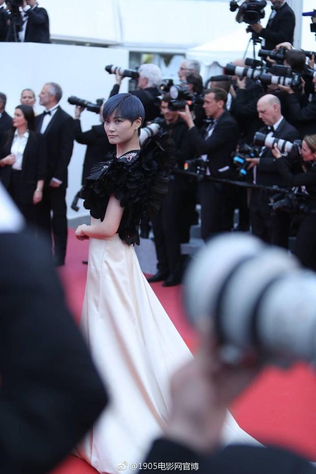 Cannes 2018: Phạm Băng Băng gây thất vọng vì nhuộm xanh thảm đỏ, hở ngực - gây sốc vẫn được tận dụng triệt để - Ảnh 19.