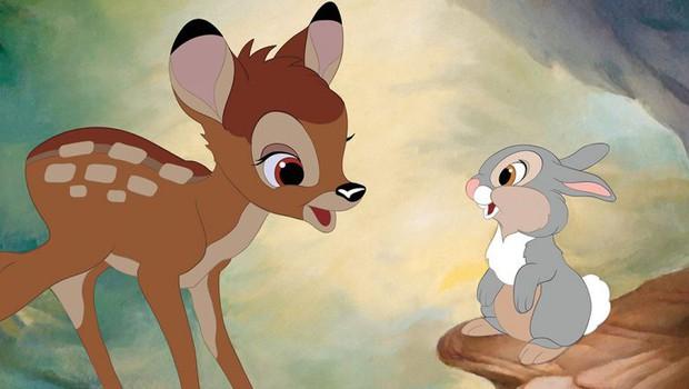 Câu hỏi đau đầu nhất trong ngày: Hươu với nai khác nhau chỗ nào? Hóa ra tất cả chúng ta đã nhầm về nai Bambi - Ảnh 1.