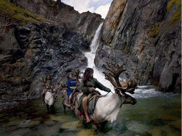 Cuộc sống của tộc người nuôi tuần lộc ở Mông Cổ - Ảnh 1.
