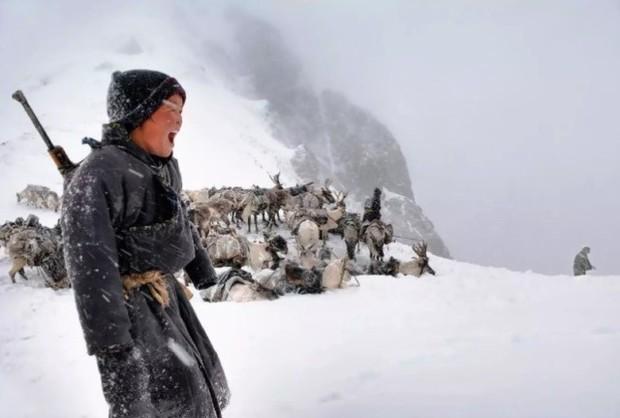 Cuộc sống của tộc người nuôi tuần lộc ở Mông Cổ - Ảnh 12.