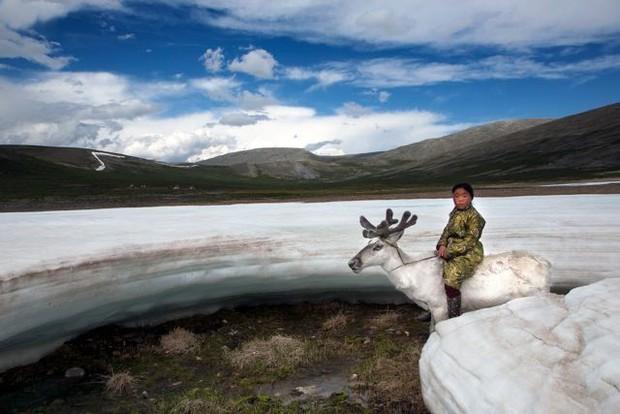 Cuộc sống của tộc người nuôi tuần lộc ở Mông Cổ - Ảnh 13.