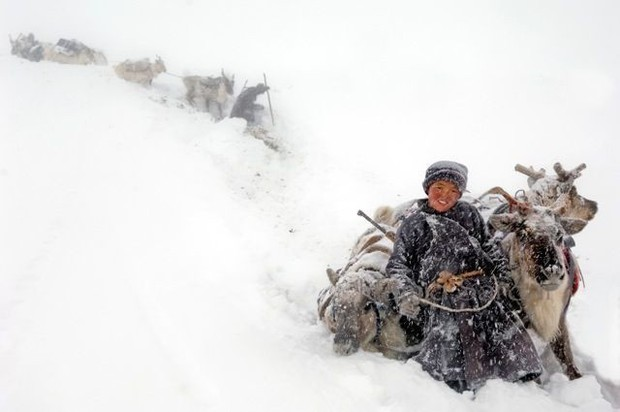 Cuộc sống của tộc người nuôi tuần lộc ở Mông Cổ - Ảnh 10.