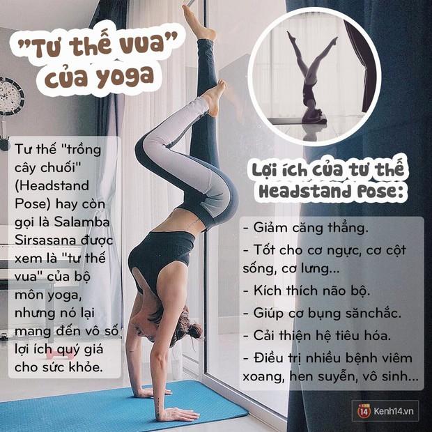 Vì sao một loạt người nổi tiếng như Lee Hyori, Goo Hara, Tăng Thanh Hà, Hồ Ngọc Hà đều tập tư thế yoga này? - Ảnh 8.