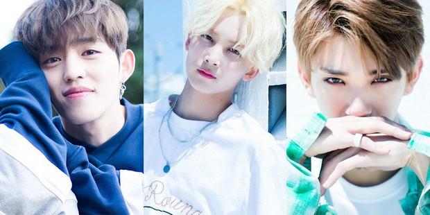 1995 là một năm tuyệt vời theo netizen, vì có quá nhiều trai xinh gái đẹp cực phẩm của Kpop ra đời - Ảnh 19.
