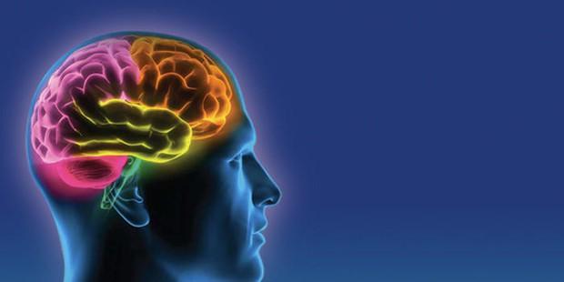 Ảnh hưởng nghiêm trọng của trầm cảm đến não bộ mà ít ai để ý - Ảnh 3.