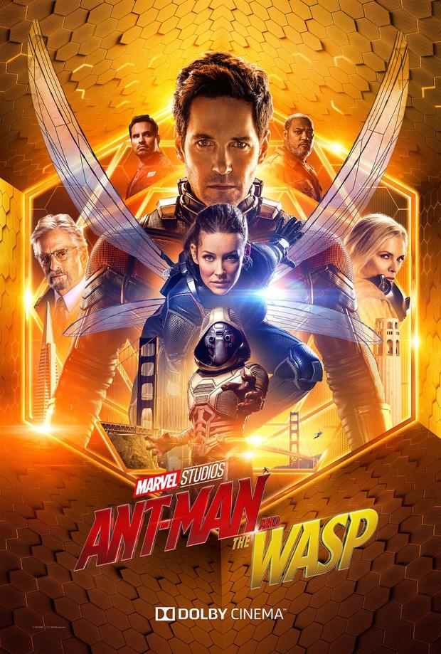 Nếu Avengers 4 mà thiếu anh chị ong kiến Ant-Man and the Wasp thì không xong đâu! - Ảnh 2.