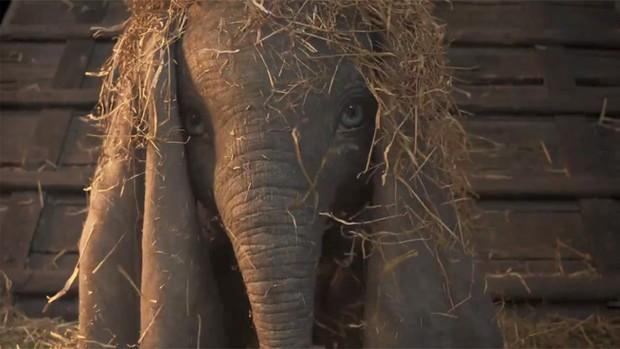 Voi con biết bay Dumbo bất ngờ quay trở lại với phiên bản live-action đẹp nhức nhối - Ảnh 4.