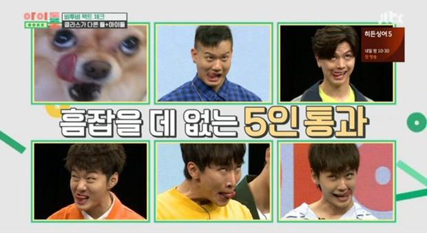 Không hổ danh nhóm nhạc bựa nhất Kpop, BtoB thi xem ai làm mặt giống... cún nhất - Ảnh 2.