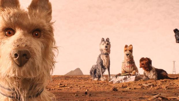 Isle of Dogs: Xã hội bầy chó qua lăng kính khác lạ của phù thủy bậc thầy Wes Anderson - Ảnh 6.