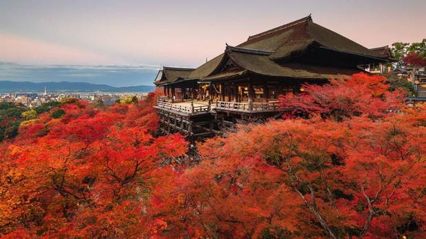 Nhật Bản - Xứ sở vạn vật đều là Thần - Ảnh 15.