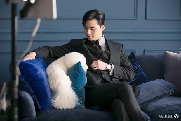 Ngắm dàn nam chính đang hot nhất màn ảnh Hàn mặc vest mới thấy thực sự là cực phẩm - Ảnh 25.