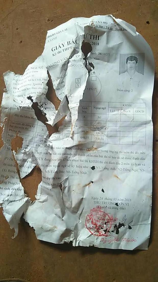 Chuột gặm nát giấy báo dự thi THPT Quốc gia 2018, thí sinh lo lắng lên mạng cầu cứu - Ảnh 1.