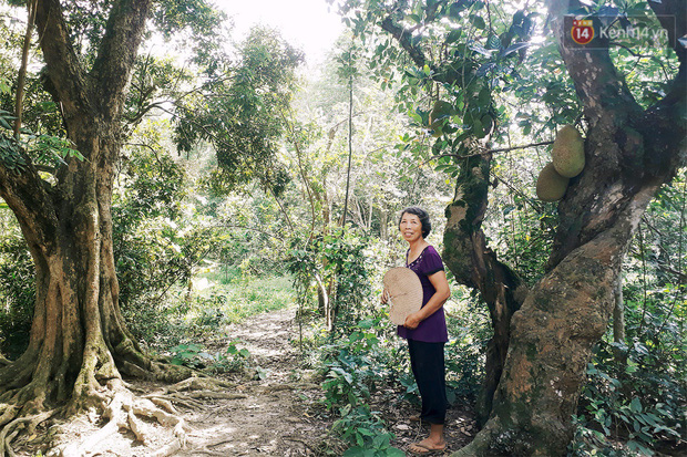 Những người bỏ phố thị, chẳng màng tiền bạc và dành phần đời còn lại để sống bình thản giữa núi rừng thiên nhiên - Ảnh 1.