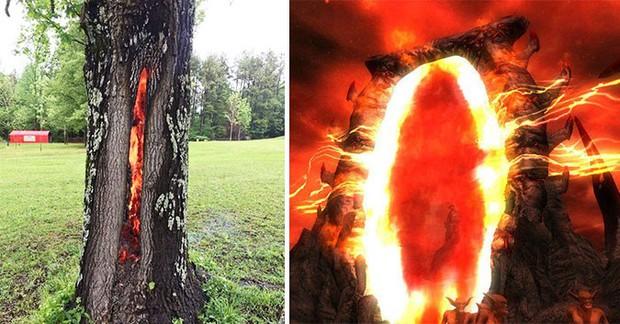 Những bức hình chứng minh khi Mẹ Thiên nhiên lên tiếng - con người sẽ đứng hình thế nào - Ảnh 4.