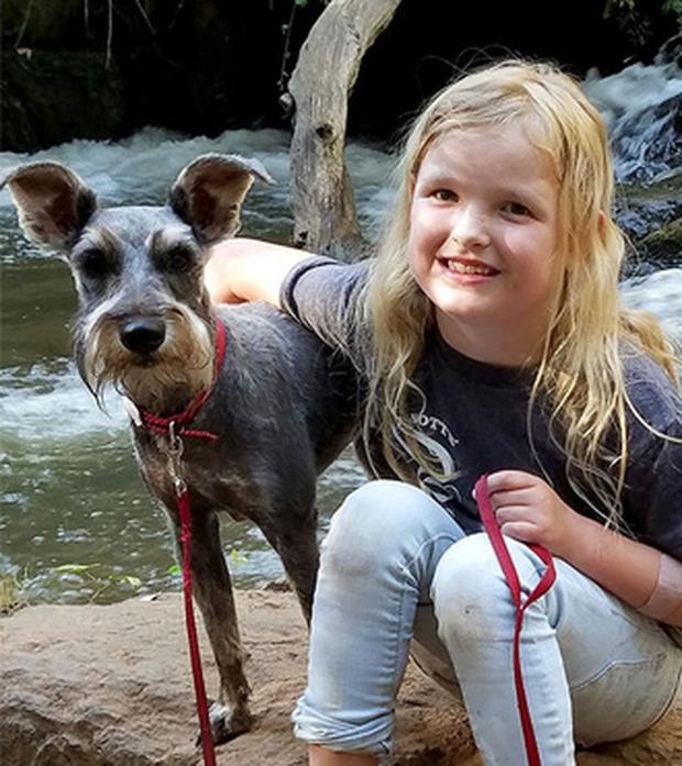 Chuyến đi chơi của gia đình bỗng hóa đau thương khi chú chó cưng chết bất ngờ vì một trò chơi rất phổ biến - Ảnh 3.