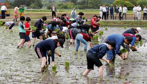 Bảy năm sau thảm họa sóng thần, thành phố ma Fukushima giờ đây trở thành tâm điểm du lịch tại Nhật Bản - Ảnh 8.
