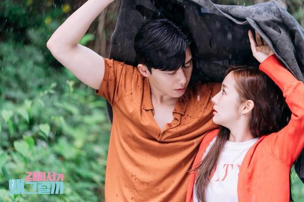 Fan phát hiện Thư Ký Kim có nhiều chi tiết cực giống hai phim trước của Park Seo Joon - Ảnh 4.