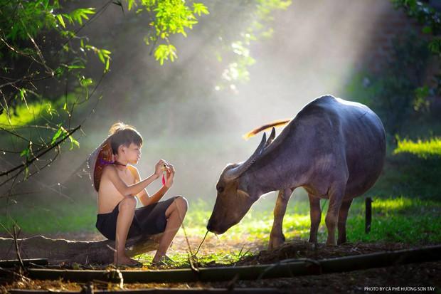 Bộ ảnh làng mạc Việt Nam trong lành mát rượi của một thầy giáo cấp 3 khiến dân tình ào ào về quê dịp cuối tuần - Ảnh 2.