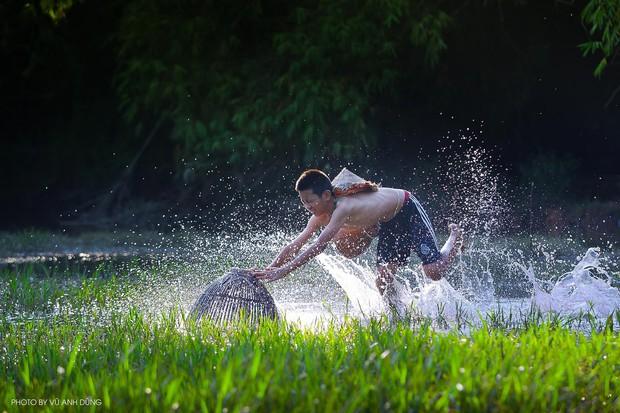 Bộ ảnh làng mạc Việt Nam trong lành mát rượi của một thầy giáo cấp 3 khiến dân tình ào ào về quê dịp cuối tuần - Ảnh 3.