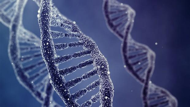 7 nguyên nhân dẫn đến căn bệnh ung thư tụy mà bạn thường chủ quan bỏ qua - Ảnh 4.