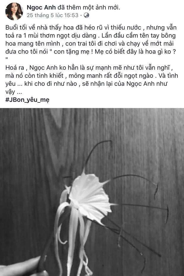 Ngọc Anh Audition viết không có gì để nhớ nữa, đã ly hôn chồng ở tuổi 30? - Ảnh 5.