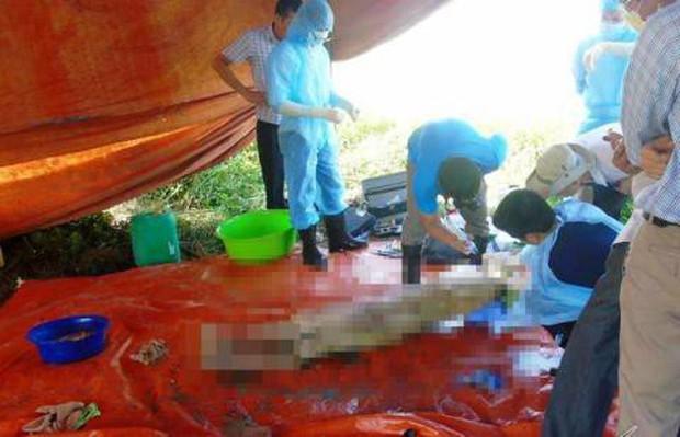 Vụ khai quật thi thể nữ kế toán trưởng: Thêm tình tiết bất thường tại phòng của nạn nhân - Ảnh 3.