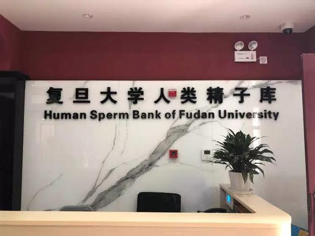 Ngân hàng tinh trùng Thượng Hải từ chối người hiến tặng có dấu hiệu rụng tóc hoặc béo phì - Ảnh 1.