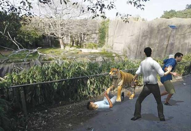 Trung Quốc: Cùng mẹ cho khỉ ăn ở vườn thú, bé gái bất ngờ bị con vật... đấm vào mặt - Ảnh 4.