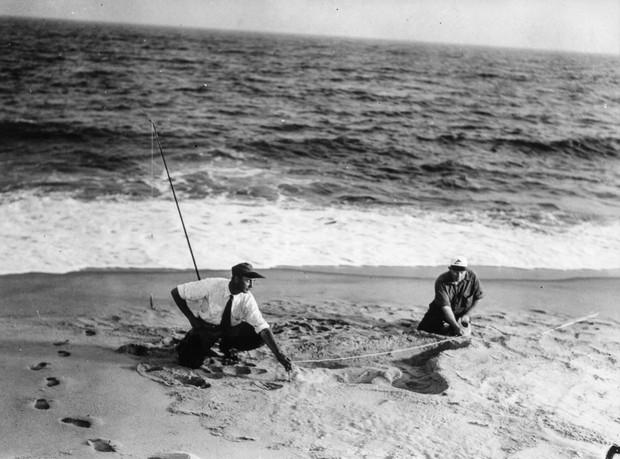 Rắn khổng lồ Nantucket 1937: Con quái vật biển gây rúng động giới khoa học, làm dân tình khiếp sợ xanh mặt hóa ra chỉ là... bong bóng đồ chơi - Ảnh 1.