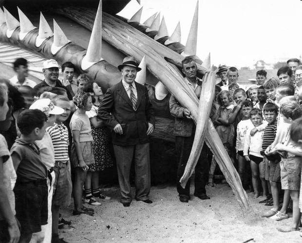 Rắn khổng lồ Nantucket 1937: Con quái vật biển gây rúng động giới khoa học, làm dân tình khiếp sợ xanh mặt hóa ra chỉ là... bong bóng đồ chơi - Ảnh 7.
