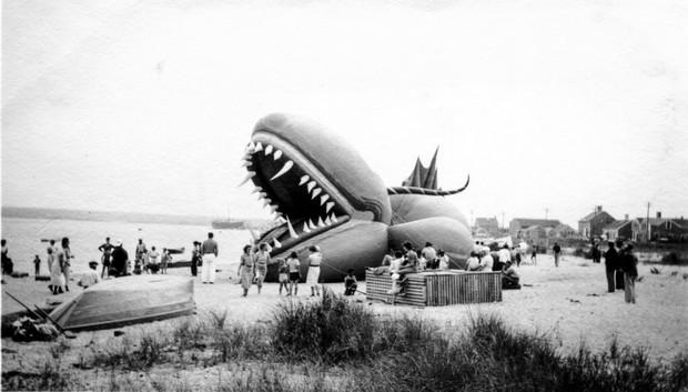 Rắn khổng lồ Nantucket 1937: Con quái vật biển gây rúng động giới khoa học, làm dân tình khiếp sợ xanh mặt hóa ra chỉ là... bong bóng đồ chơi - Ảnh 11.