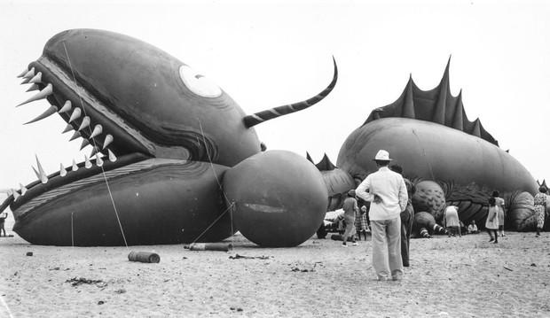 Rắn khổng lồ Nantucket 1937: Con quái vật biển gây rúng động giới khoa học, làm dân tình khiếp sợ xanh mặt hóa ra chỉ là... bong bóng đồ chơi - Ảnh 12.