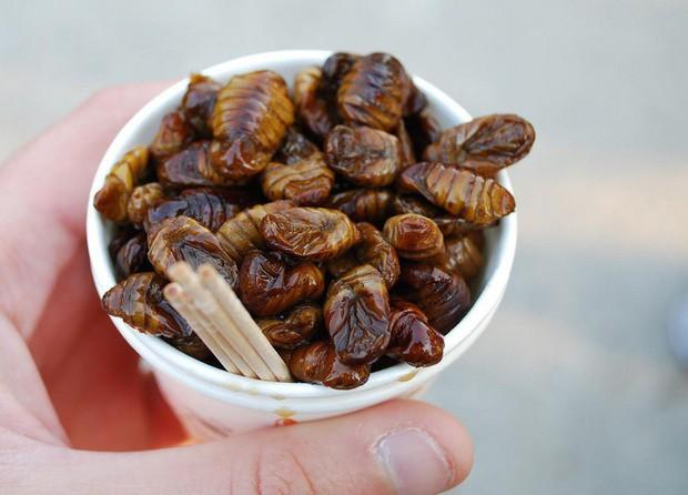 Đừng nói bạn yêu ẩm thực Hàn nếu chưa thử món ăn từ nhộng độc lạ này - Ảnh 5.