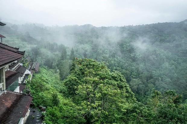 Khách sạn bỏ hoang bí ẩn trên đảo Bali: Hoàn hảo từ kiến trúc đến vị thế nhưng không bao giờ mở cửa - Ảnh 2.
