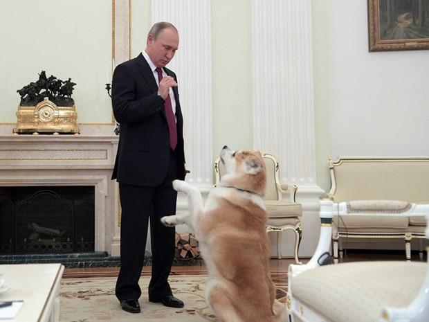 Ảnh: Bật mí về cuộc sống thường ngày của Tổng thống Nga Putin - Ảnh 19.