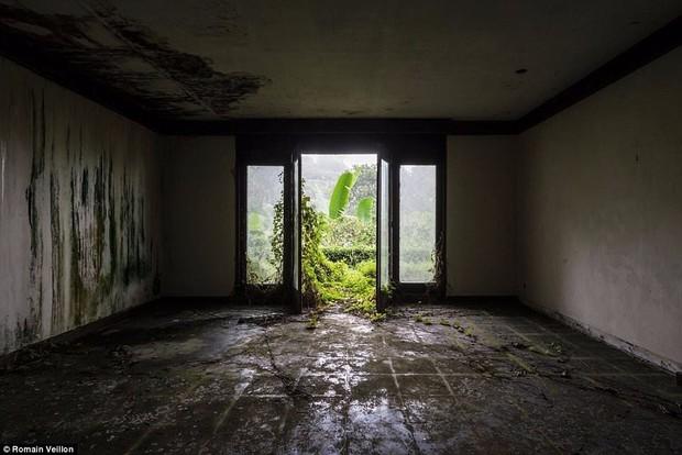 Khách sạn bỏ hoang bí ẩn trên đảo Bali: Hoàn hảo từ kiến trúc đến vị thế nhưng không bao giờ mở cửa - Ảnh 8.
