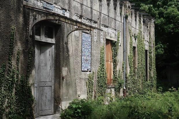 Bên trong khu vườn bị bỏ hoang ở Paris, nơi 100 năm trước con người từng bị đem ra triển lãm, mua vui chẳng khác gì ở sở thú - Ảnh 18.