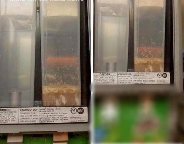 Đăng nhầm thông báo kiểm điểm nhân viên để máy bán sữa có giòi lên fanpage chính thức thay vì group kín, quản lý Lotte Cinema lên tiếng - Ảnh 2.
