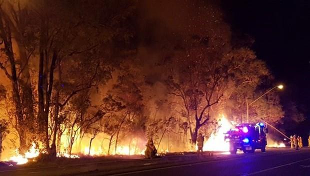 Trên 30 vụ cháy rừng xảy ra trong một ngày tại Thụy Điển - Ảnh 1.