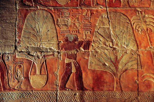 """Dù bị """"con ghẻ"""" phá hoại, lăng mộ vị Nữ hoàng Ai Cập này vẫn đẹp hoàn hảo, hé lộ quyền lực tuyệt đối - Ảnh 4."""