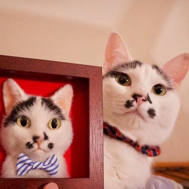 Chỉ bằng những sợi len, các nghệ nhân Nhật Bản đã tạo ra những chú mèo bông y chang ngoài đời - Ảnh 5.