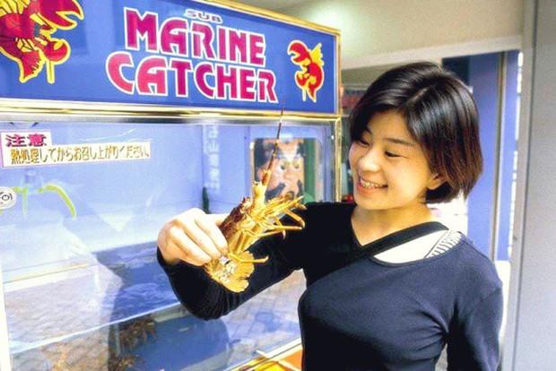 Ở Nhật, ra ngõ là gặp ngay máy bán hàng tự động và đây là 6 lí do cực cool của nó - Ảnh 8.