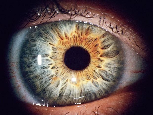 Nghiên cứu mới: công nghệ quét mống mắt có thể phân biệt được mắt người sống và người chết, độ chính xác lên tới 99% - Ảnh 1.
