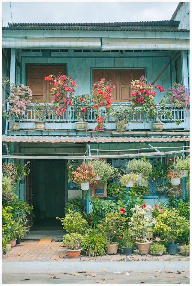 Ngôi nhà xanh mát bóng cây của cô giáo nghỉ hưu khiến ai cũng mơ về xóm nhỏ, phố nhỏ, nhà tôi ở đó - Ảnh 1.