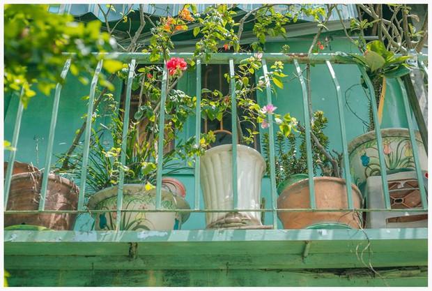 Ngôi nhà xanh mát bóng cây của cô giáo nghỉ hưu khiến ai cũng mơ về xóm nhỏ, phố nhỏ, nhà tôi ở đó - Ảnh 10.