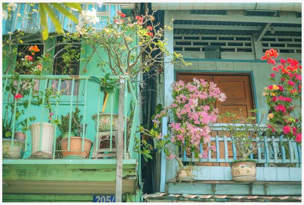 Ngôi nhà xanh mát bóng cây của cô giáo nghỉ hưu khiến ai cũng mơ về xóm nhỏ, phố nhỏ, nhà tôi ở đó - Ảnh 3.
