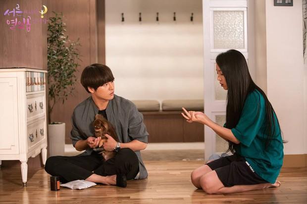 Still 17: Phim lãng mạn Hàn có cốt truyện cực tươi, cực độc, ai cũng nên xem ngay! - Ảnh 4.