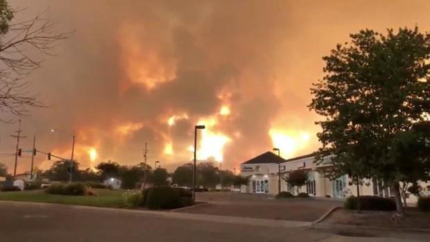 """Hãi hùng cảnh tượng cháy rừng dữ dội """"bủa vây"""" bang California, Mỹ - Ảnh 9."""